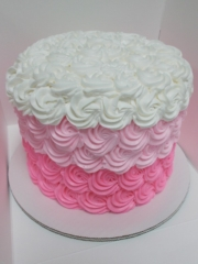 0102-specialty-cake