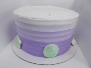 0152-specialty-cake